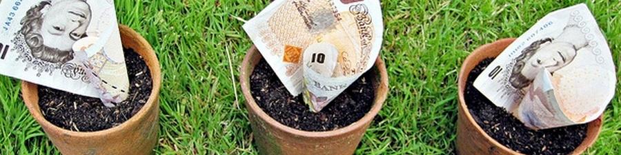 odzyskaj podatek paye